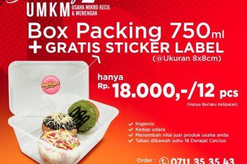 Wadah Box Packaging Berkualitas di Lampung